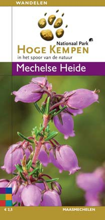 Detailfoto van Mechelse Heide