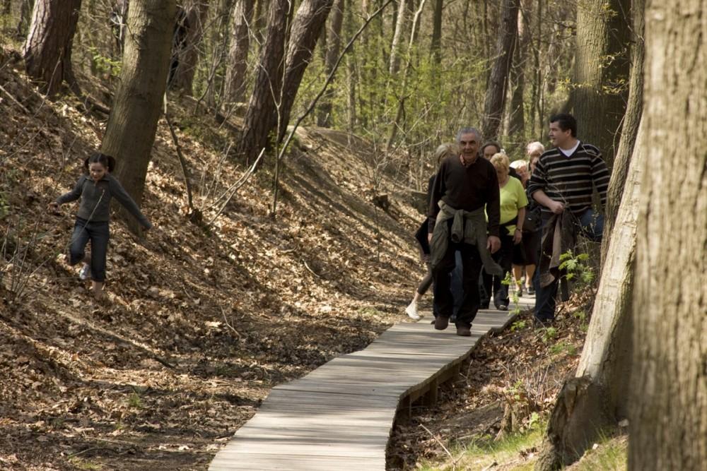 single wandelingen kempen