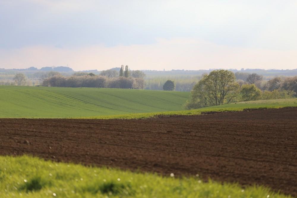 landschaphex.jpg