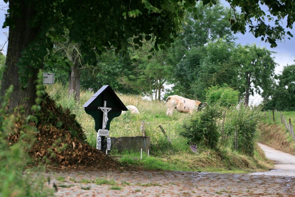 wegkapel-in-moelingen.jpg