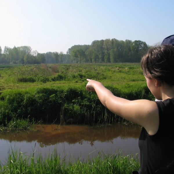 Limburgs Landschap vzw