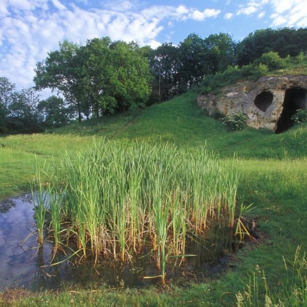 Regionaal Landschap Haspengouw en Voeren