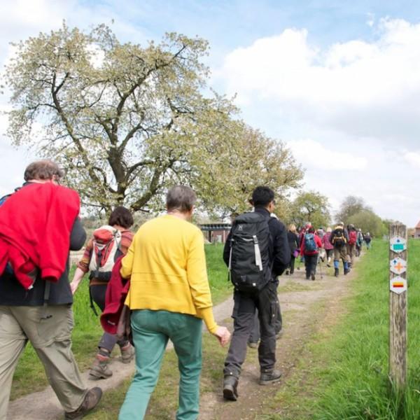 Wandelen in Limburg
