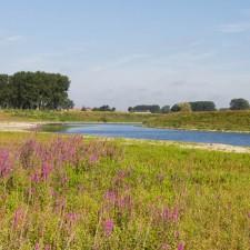 Maasvallei: Stokkem- instapplaats 'Oude Maas' (P9) (rood)