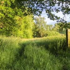 Hoge Kempen: Abeekvallei - instapplaats Kerk Reppel (groen)