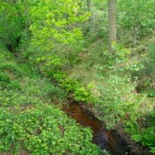 Kempen~Broek: Smeetshof  - instapplaats Smeetshoeve  (paars)