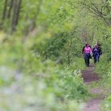 Wandelen tussen Jeker en Maas - Hauts de Froidmont, startplaats Hauts de Froidmont (groen)