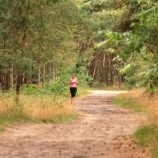 Heuvelse Heide (rood)