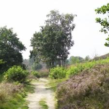 Toegangspoort Mechelse Heide (rood)