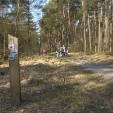 Toegangspoort Mechelse Heide (paars)