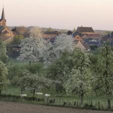 Greenspot Zammelen, startplaats kerk Zammelen (blauw)