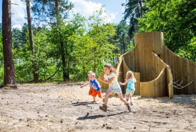 Bosland: Holven -'t Plat - startplaats Holheide (groen)