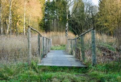 Hoge Kempen: Abeekvallei - instapplaats Erperheide (groen)