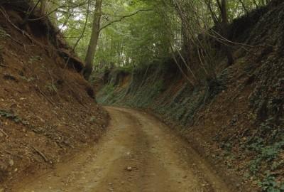 Loksbergen-Zelk: De Reinvoart (groen)