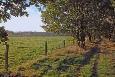 De Groote Heide: Kolis - startplaats Torenstraat (oranje)