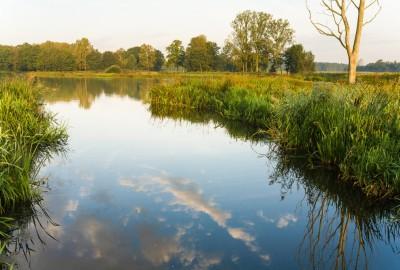 Kempen~Broek: St.-Maartensheide - De Luysen - Instapplaats Mariahof (geel)