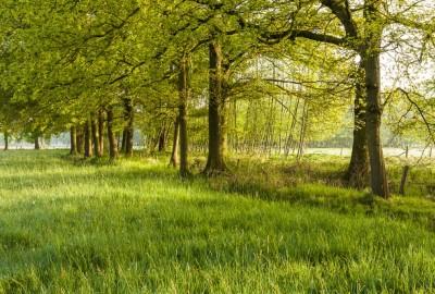 Kempen~Broek: St.-Maartensheide - De Luysen - Instapplaats Mariahof (blauw)