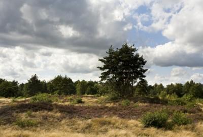 Hoge Kempen: Oudsberg - Instapplaats Gruitrode Centrum (P3) (rood)