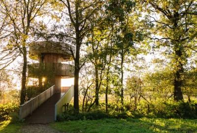 Kempen~Broek: Weerterbos en Hugterheide - Instapplaats Hoogbosweg (oranje)