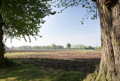 Hoksent-Molhem: Kerk Kleine-Brogel (rood)