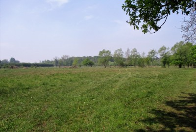 De Wijers: Dauteweyers - Dorpsbemden - startplaats Demerstrand (groen)