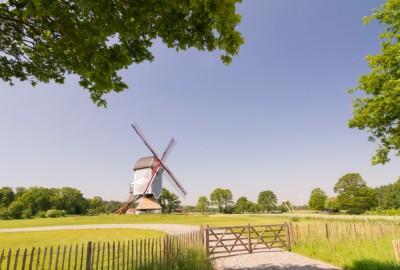 Bosland: Kattenbos - Startplaats Zandstraat (oranje)