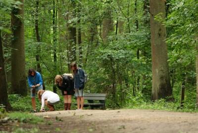 Greenspot Nieuwenhoven, startplaats provinciaal domein Nieuwenhoven (oranje)