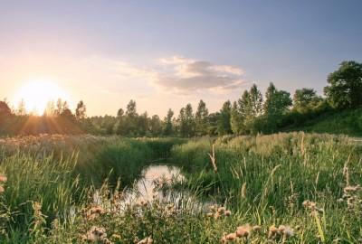 Greenspot Mettekoven - grand cru landschap (oranje)