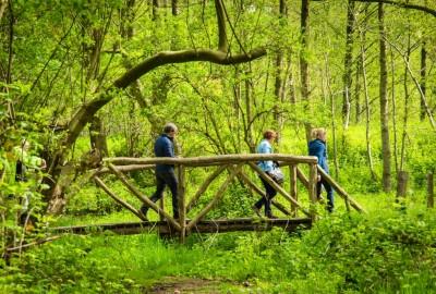 Bosland: Hoksent - Molhem - startplaats Mullemer Bemden (blauw)
